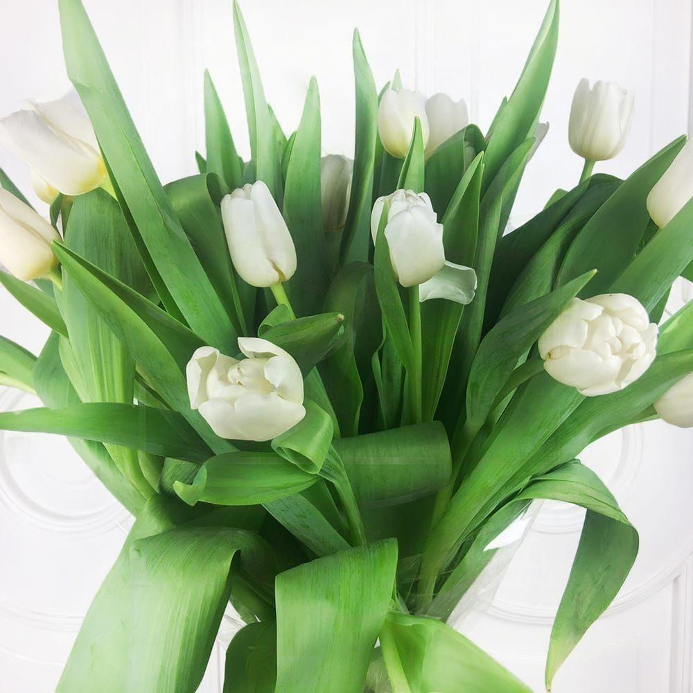 Купить, заказать букет невесты спб с белыми тюльпанами