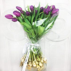 Букет 25 высоких фиолетовых тюльпанов с луковицей (от 60см)