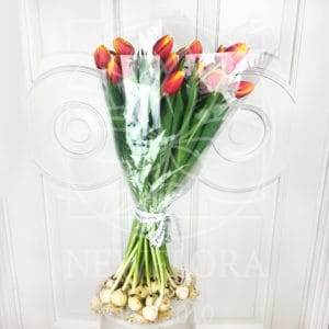 Букет 25 высоких персиковых тюльпанов с луковицей (от 60см)