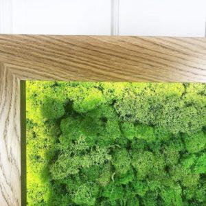 Картина из стабилизированного мха в дубовой раме с логотипом и подсветкой  60×100см
