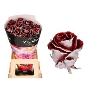 Роза натуральная восковая зима #1