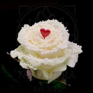Роза натуральная восковая сердечко #9
