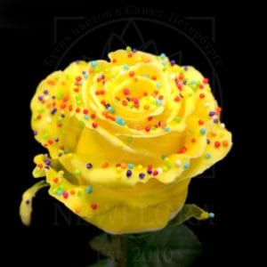 Роза натуральная восковая десерт #5