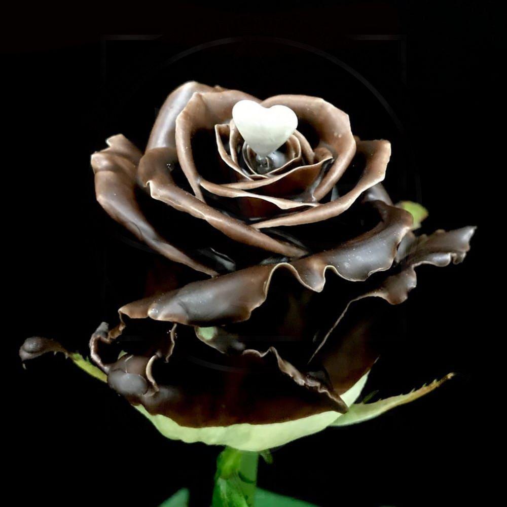 Роза натуральная восковая сердечко #10
