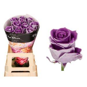 Роза натуральная восковая зима #4