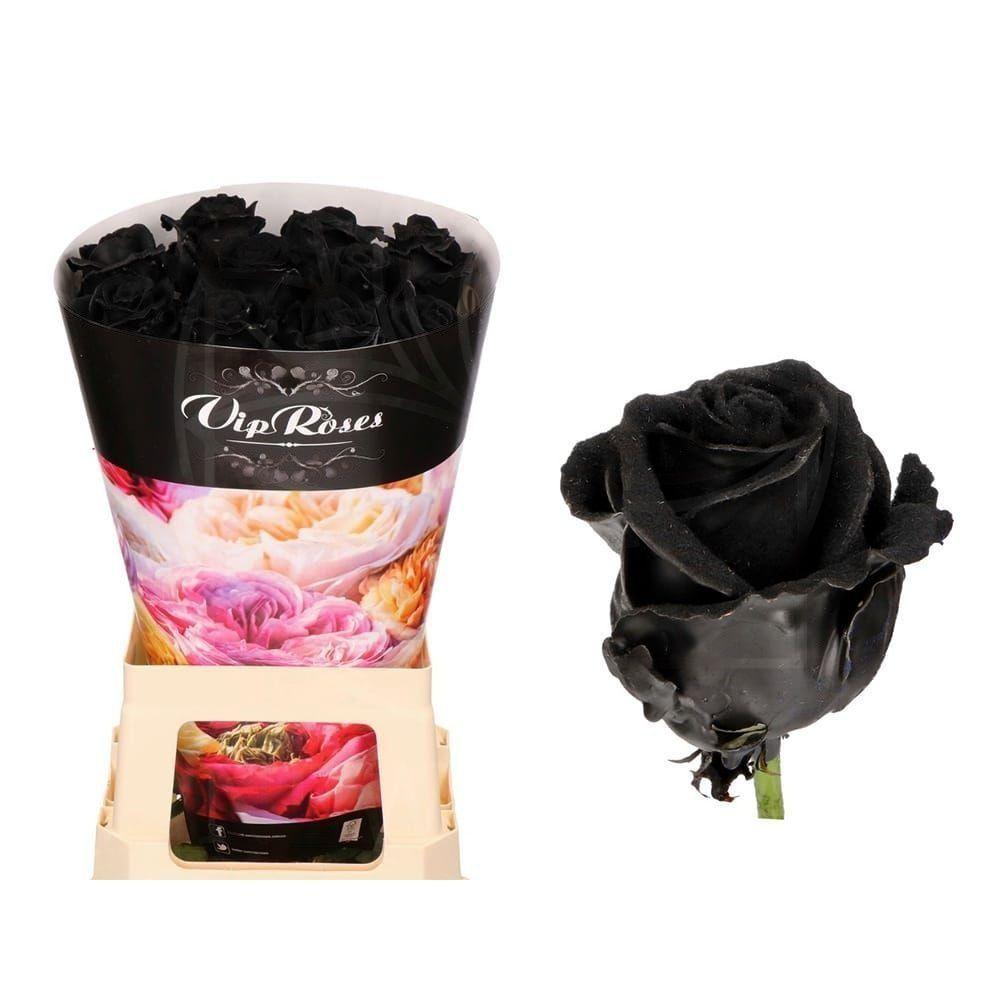 Роза натуральная восковая вельвет #2