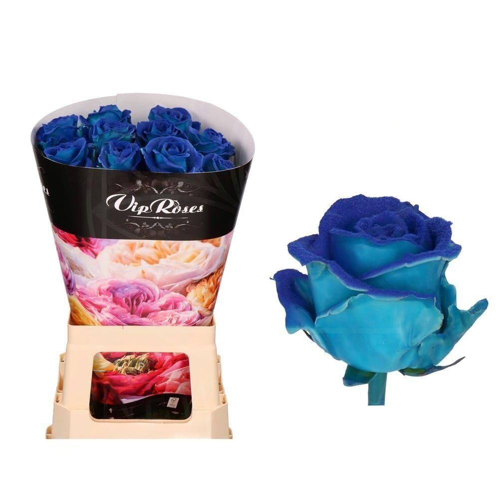 Роза натуральная восковая вельвет #3