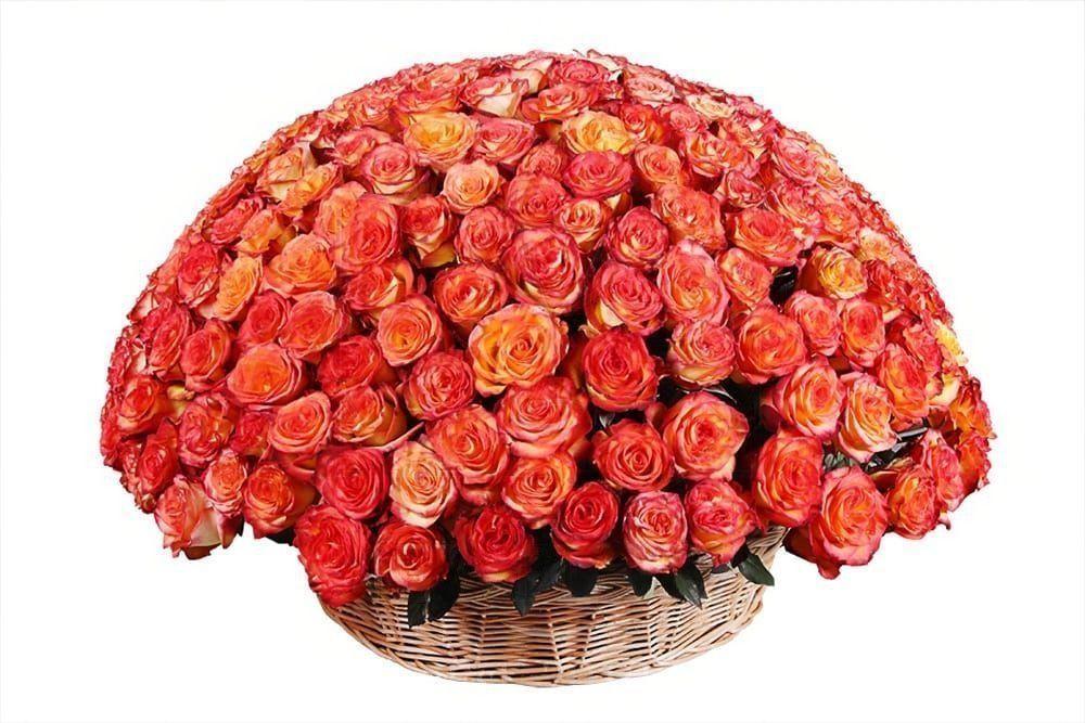 Большая корзина цветов 301 рыжая роза