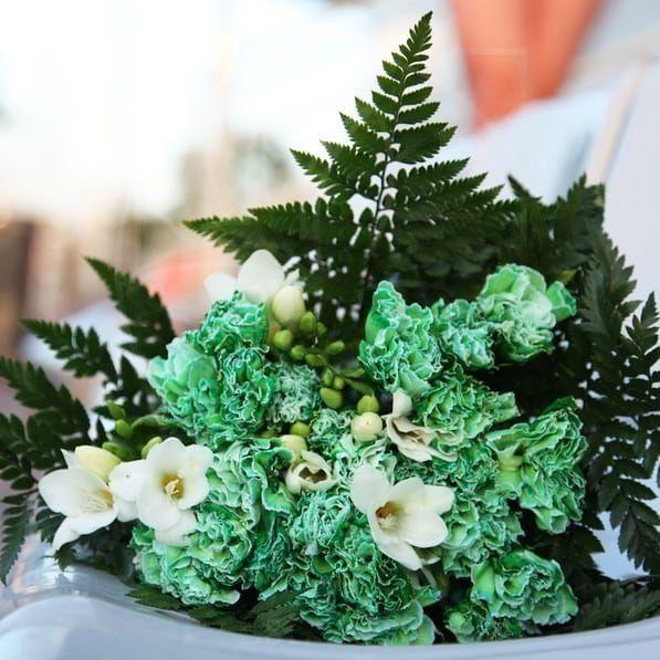 Букет 15 зеленых гвоздик (диантус) с зеленью