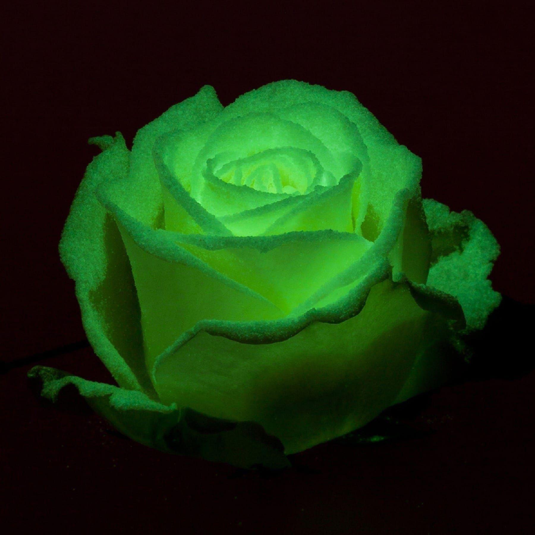 Букет 51 роза светящаяся в темноте