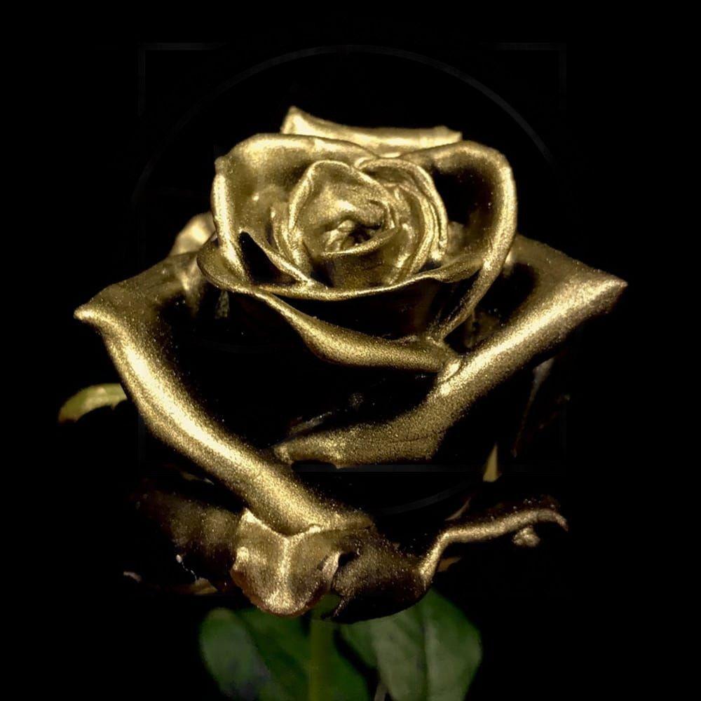 Роза натуральная восковая золотая