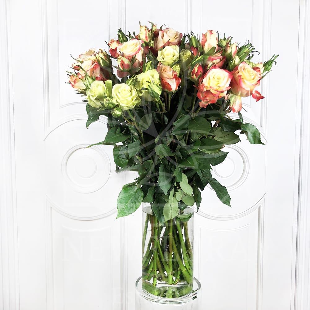 Викторианские кустовые розы поштучно цвет микс