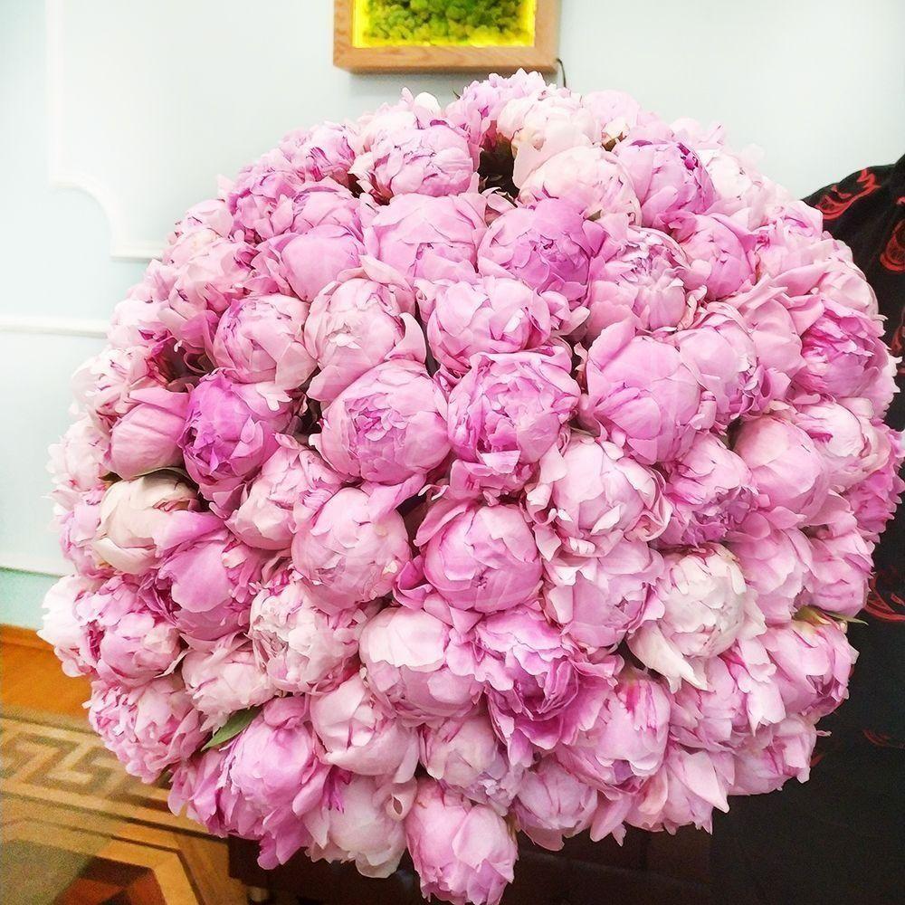 Букет 101 крупный розовый пион