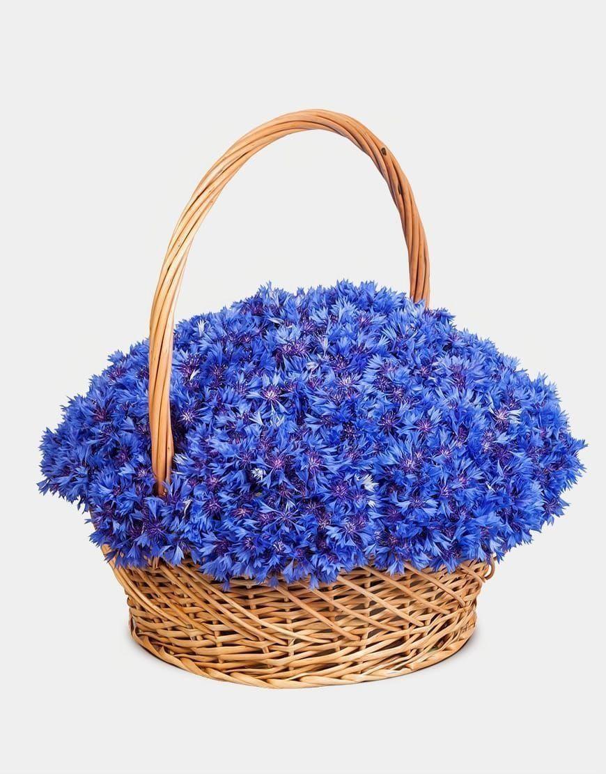 Корзина цветов 151 василёк