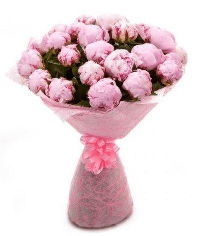 Букет 31 большой розовый пион в упаковке