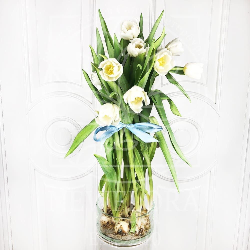 Ваза для тюльпанов с луковицей 20×10см