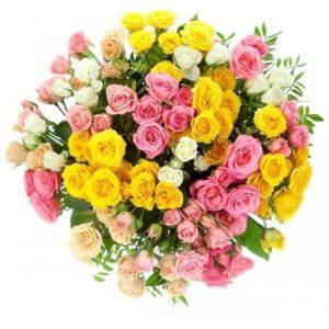 Букет 25 кустовых роз с фисташкой (цвет микс)