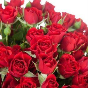 Букет 25 красных кустовых роз