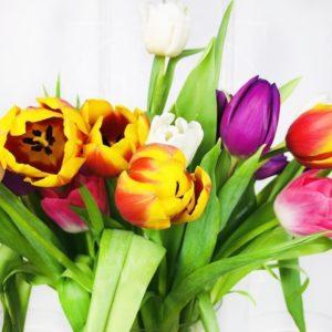 Букет 25 высоких тюльпанов цвет микс (60см)