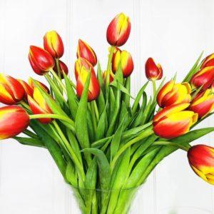 Букет 25 высоких персиковых тюльпанов (60см)