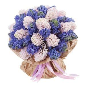 Букет 25 синих и розовых гиацинтов