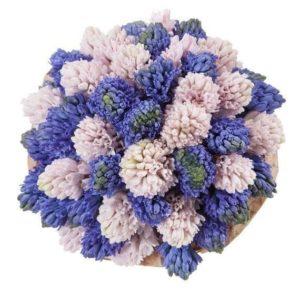 Букет 35 синих и розовых гиацинтов