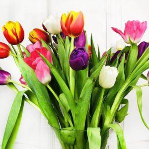 Букет 39 высоких тюльпанов цвет микс (60см)