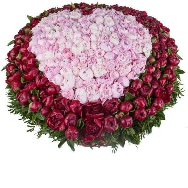 Большая корзина цветов 201 пион с зеленью