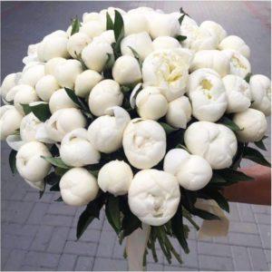 Букет 51 белый пион «Duchesse»