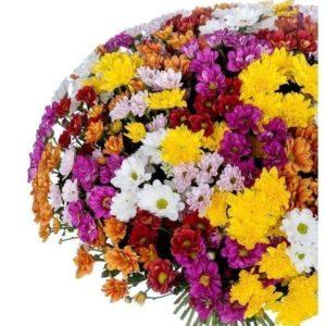 Букет 51 хризантема микс