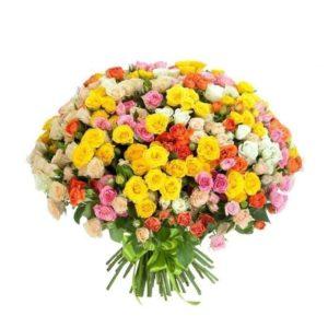 Букет 75 кустовых разноцветных роз