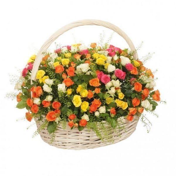 Корзина цветов 75 кустовых роз с зеленью