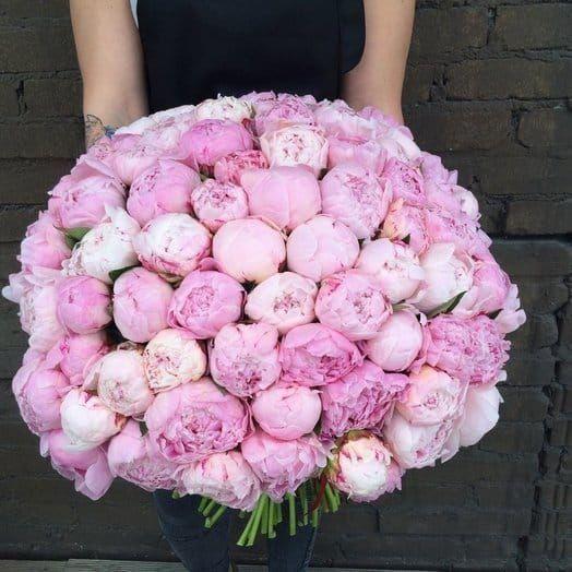 Букет 75 крупных розовых пионов