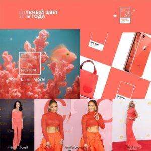 Букет 51 крупный коралловый пион в упаковке (Цвет года 2019 по версии Pantone)