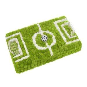 Футбольное поле из живых цветов 50×30см