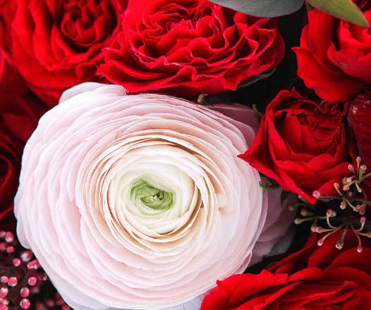 Корзина анемонов с ранункулюсами и розами