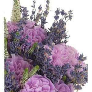 Букет 25 лиловых гвоздик с лавандой