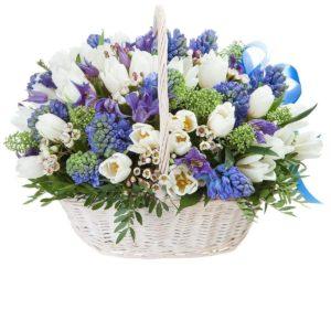 Корзина цветов с тюльпанами, гиацинтами, клематис и зеленая скиммия