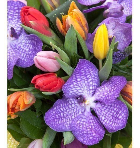 Букет 25 тюльпанов с орхидеями ванда