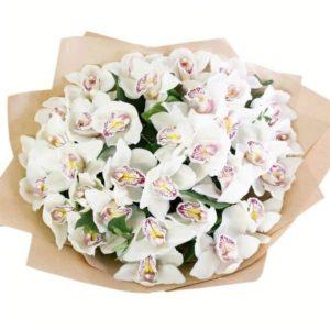 Букет 35 белых орхидей (Premium) с зеленью