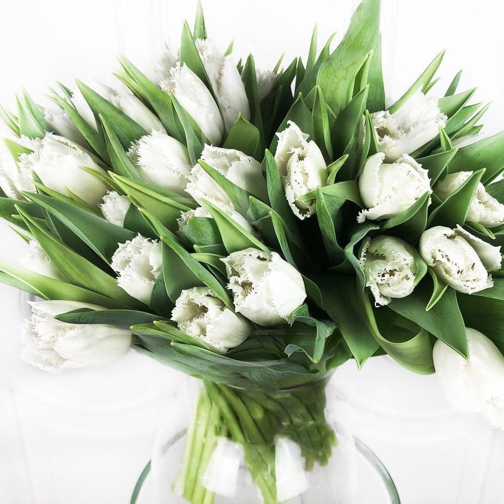 Заказать букет невесты спб с белыми тюльпанами, букетов. ростов