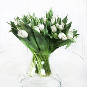Букет 51 махровый белый тюльпан
