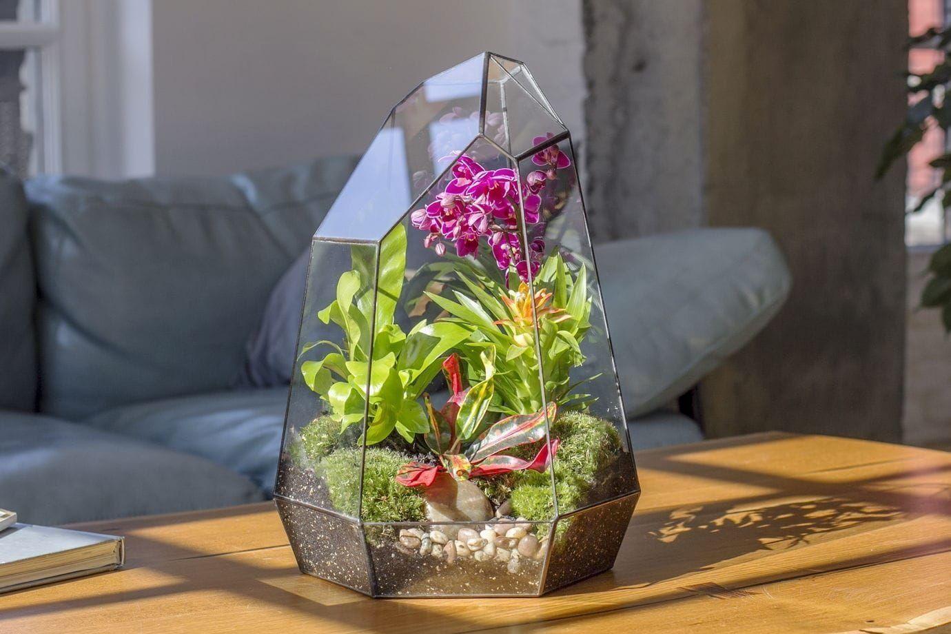Флорариум вытянутый с орхидеей, зеленью и стабилизированным мхом