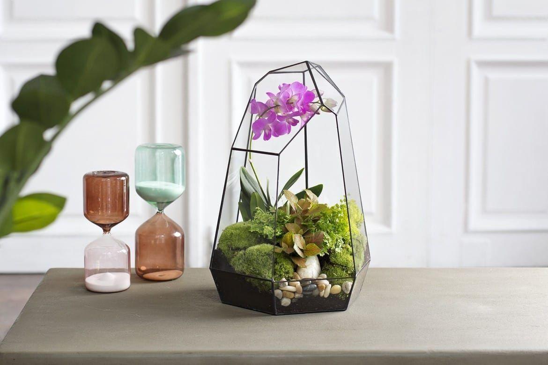 Флорариум с орхидеей, папоротником, зеленью и мхом