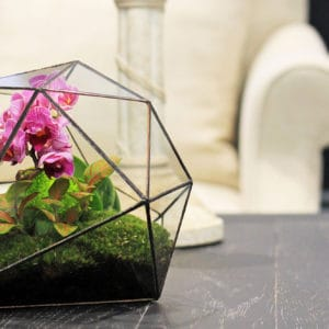 Треугольный флорариум с орхидеей, папоротником и мхом