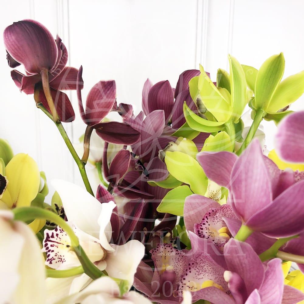Орхидея цимбидиум на ветке 50см