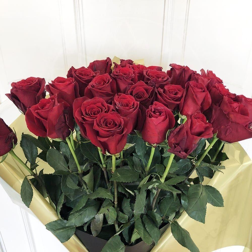 Букет 25 красных роз высотой 130см в упаковке