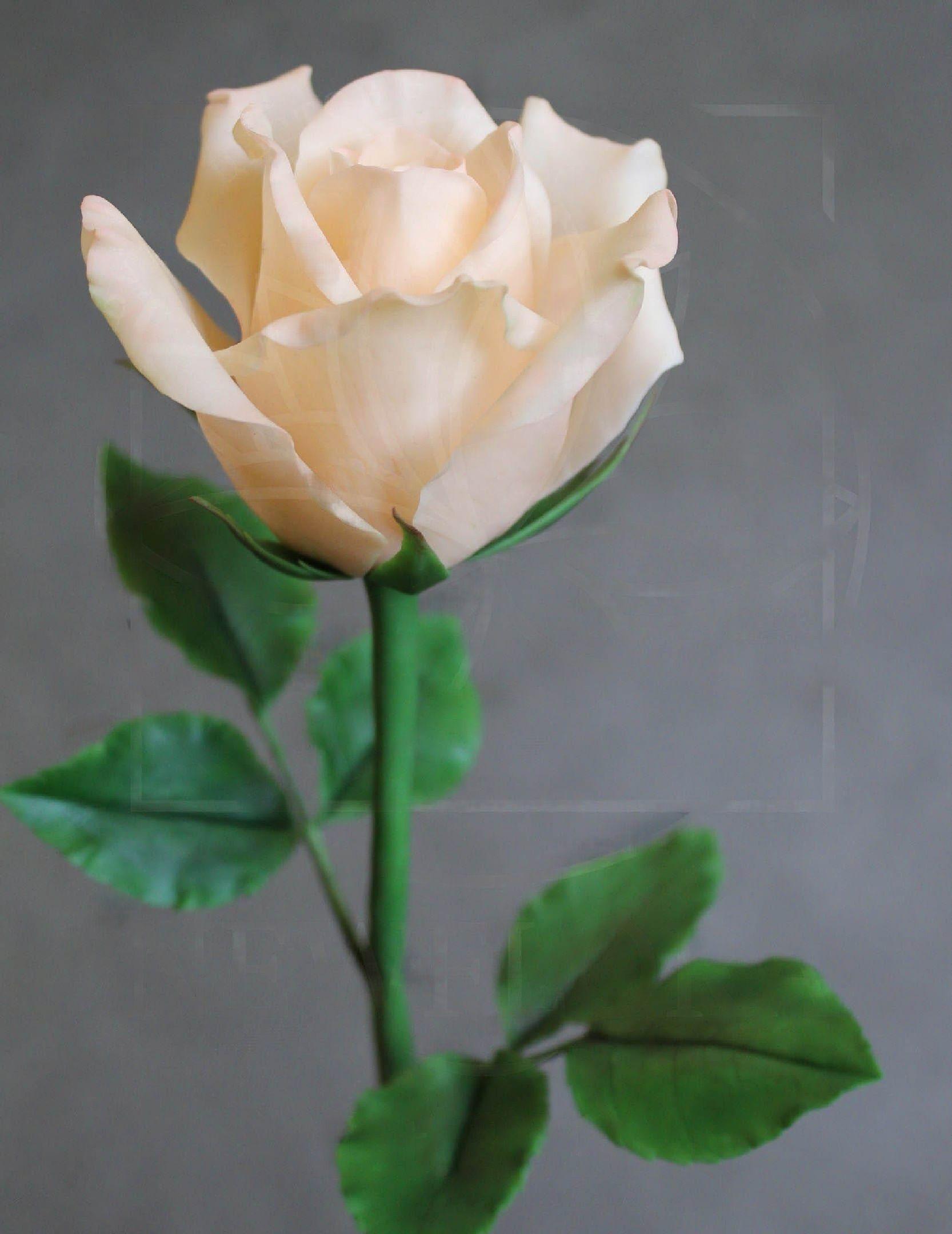 Розы керамические персиковые из полимерной глины