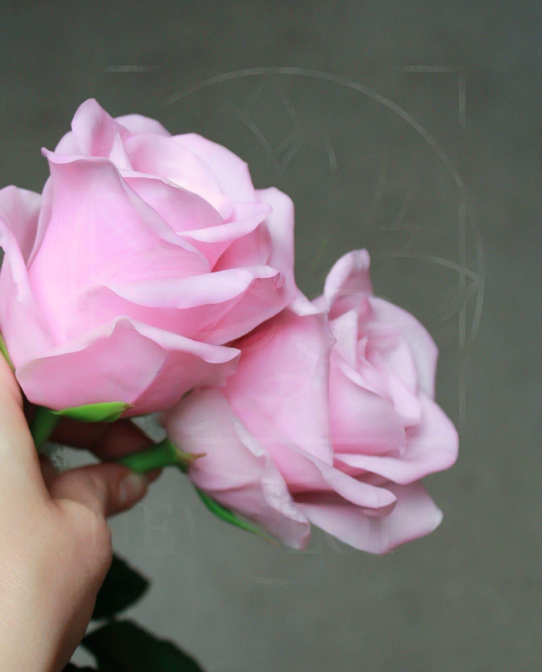 Розы керамические розовые из полимерной глины