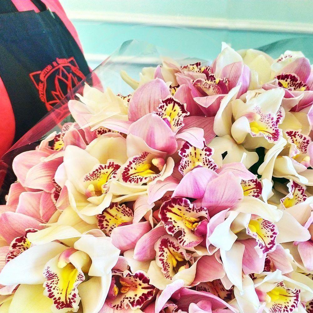 тюльпаны розы орхидеи фото читать зарубежную классику